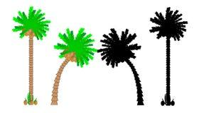 Set of palms. Set of palm trees isolated on white background Stock Images