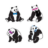 Set of panda bears with color human accessories. Vector Royalty Free Stock Image