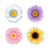 Set of paper art flowers. Royalty Free Stock Photos