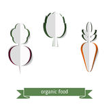 Set of paper vegetables. Royalty Free Stock Images