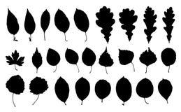 Set parkowe liść sylwetki ilustracja wektor