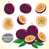 Set of passionfruit (passion fruit) in various styles  format Stock Photo