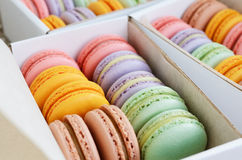Set pastel colored macaron in the boxes Royalty Free Stock Photos