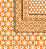 Set pattern floral pattern orange Royalty Free Stock Images