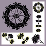 Set of patterns with floral motifs Royalty Free Stock Photography