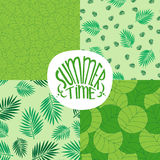 Set of patterns with foliage plants or leaves Stock Photo