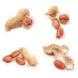 Set of peanuts isolated on white background Royalty Free Stock Image