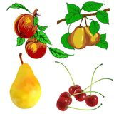 Set of pear fruits cherry and peach Stock Photos
