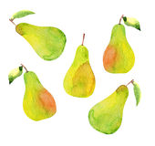 Set of pears isolated, watercolor Royalty Free Stock Photography