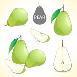 Set of pears with leaf in various styles Stock Photography