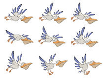 A set of pelicans storyboards. The complete set of blue white flying pelicans Royalty Free Stock Image