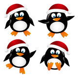 Set of penguin Santa Stock Image