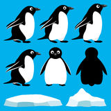 Set of penguins Royalty Free Stock Photo