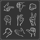 Set of people hands. Different gestures. Vector illustration. Stock Photography