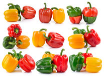 Set of pepper on white background Royalty Free Stock Photo