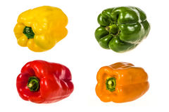 Set of peppers of different colors Stock Images