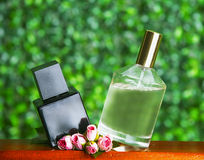 Set of perfume on green Royalty Free Stock Images