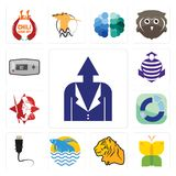Set of personal development, buterfly, tiger, betta fish, ethernet, sector, spartan, purple cobras, thermostat icons. Set Of 13 simple editable icons such as Stock Photos