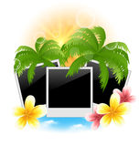 Set photo frame with palms, flowers frangipani, seascape backgro Stock Image