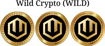 Set of physical golden coin Wild Crypto WILD. Digital cryptocurrency. Wild Crypto WILD icon set. Vector illustration isolated on white background Royalty Free Stock Photos