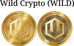 Set of physical golden coin Wild Crypto WILD. Digital cryptocurrency. Wild Crypto WILD icon set. Vector illustration isolated on white background Royalty Free Stock Images