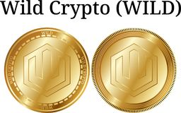 Set of physical golden coin Wild Crypto WILD. Digital cryptocurrency. Wild Crypto WILD icon set. Vector illustration isolated on white background Stock Image