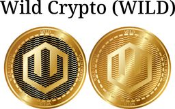 Set of physical golden coin Wild Crypto WILD. Digital cryptocurrency. Wild Crypto WILD icon set. Vector illustration isolated on white background Stock Photo