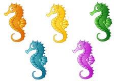 Set pięć barwiących dennych koni Obrazy Royalty Free