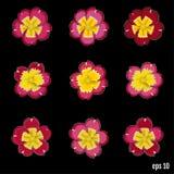 Set piękny wektor kwitnie pierwiosnku 9 elementów dla twój de royalty ilustracja