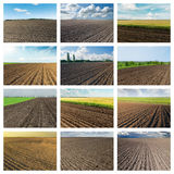 Set of pictures with black plowed agriculture fields. Collage for internet projects Royalty Free Stock Photos