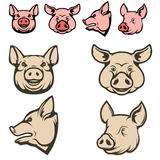 Set of pig heads. Royalty Free Stock Photography