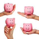 Set of Piggy Bank in Hand Royalty Free Stock Image