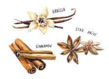 Set pikantność, rysuje akwarelą, ręka rysująca ilustracja Zdjęcie Stock