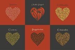 Set pikantność w kierowym kształcie Sezam, kmin, kardamon, Chili, Peppercorns, kolendery ilustracji