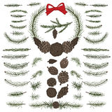 Set pine,spruce branches ,cones.Brushes. Big  set with pine,spruce branches ,cones,group,border.Modern flat decor elements for invitations,print,feb,card,banner Royalty Free Stock Image