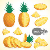Set of pineapple fruit in various styles vector format Royalty Free Stock Images