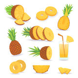 Set of pineapple slices isolated on white background. Fresh natural fruit. Royalty Free Stock Photo