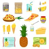 Set of pineapple slices isolated on white background. Vector illustration for decorative poster, emblem natural product Stock Photography