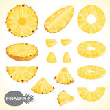 Set of pineapple in various styles vector format Stock Image