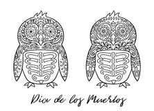 Set pingwin cukrowe Meksykańskie czaszki również zwrócić corel ilustracji wektora Fotografia Stock