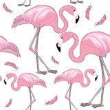 Set of pink flamingos with black beaks with pink feathers around them. Seamless pattern. Vector illustration on white background. Hand drawn two flamingos with vector illustration