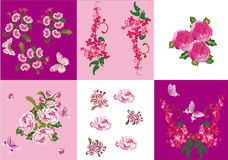 Set of pink flowers decorations Stock Photos