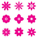 Set of pink flowers Stock Images