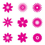 Set of pink flowers Royalty Free Stock Photos