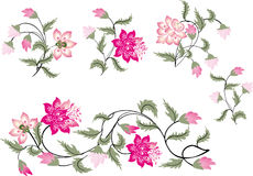 Set of pink and green flowers Royalty Free Stock Images