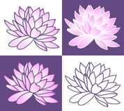 Set of Pink lotus. Vector illustration Stock Image