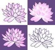 Set of Pink lotus. Stock Image