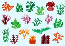 Set of pixel algae. For games and mobile applications Stock Photography