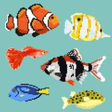 Set of pixel exotic fish. Isolated on a blue background. For games and mobile applications Stock Photography