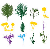 Set of Plant, Tree, Foliage Elements Silhouette Stock Photography